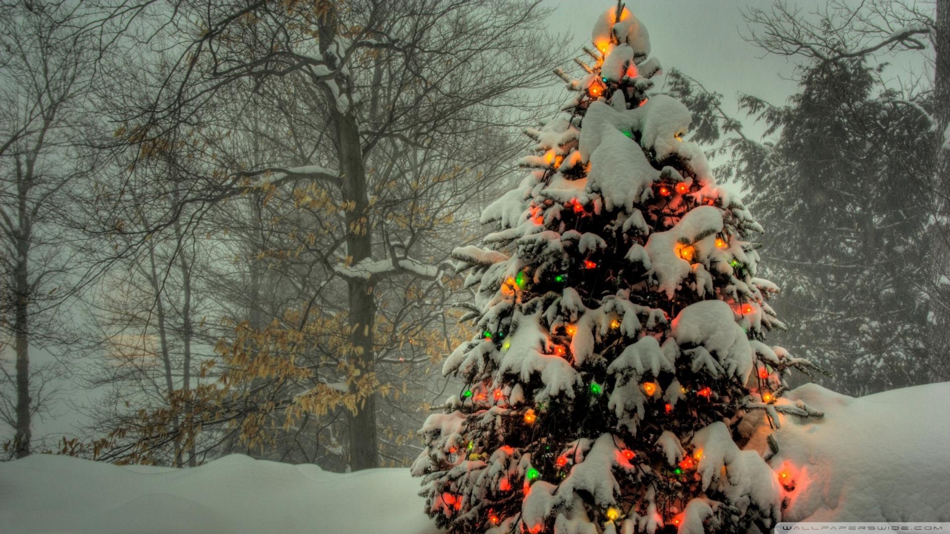 Christmas Tree Outside Wallpaper 1920x1080 Hanging Balls