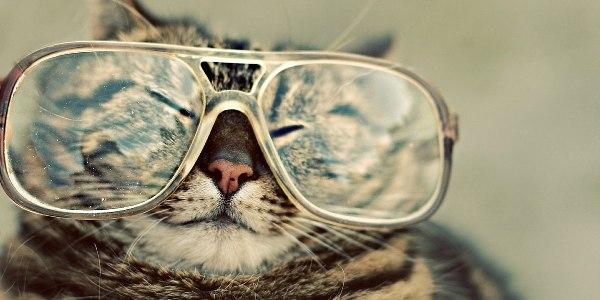 Glasses-Hipster-l