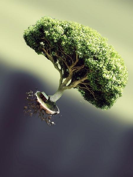 Minimalistic Trees